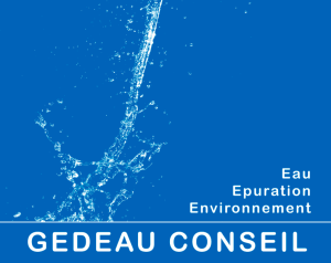 gedeau-logo 21-02-43